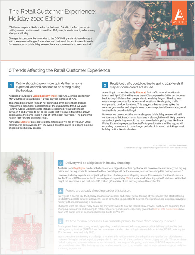 The Retail Customer Experience Holiday 2020 Edition thumbnail